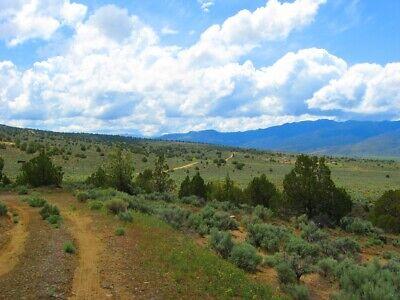 "Rare 10 Acre Elko Nevada Ranch ""Wildhorse Canyon"" W Trees! Cash Sale No Reserve! 12"