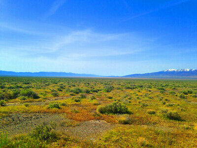 Rare 40 Acre Eureka County Nevada Ranch~Adjoins Blm Land  Cash Sale! No Reserve! 2