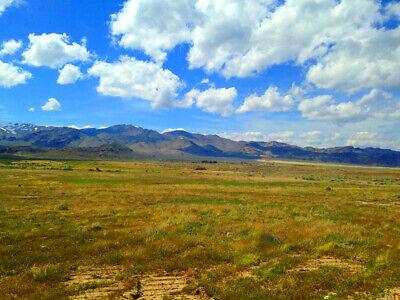 Rare 80 Acre Elko Nevada Ranch Near Utah/Idaho Border!  Cash Sale!  No Reserve! 8