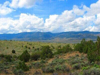 "Rare 10 Acre Elko Nevada Ranch ""Wildhorse Canyon"" W Trees! Cash Sale No Reserve! 9"
