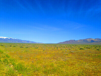 Rare 40 Acre Eureka County Nevada Ranch~Adjoins Blm Land  Cash Sale! No Reserve! 9