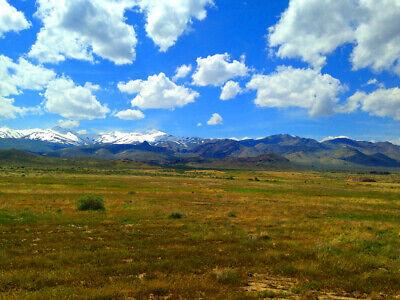 Rare 80 Acre Elko Nevada Ranch Near Utah/Idaho Border!  Cash Sale!  No Reserve! 6