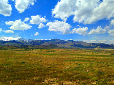 Rare 80 Acre Elko Nevada Ranch Near Utah/Idaho Border!  Cash Sale!  No Reserve! 7