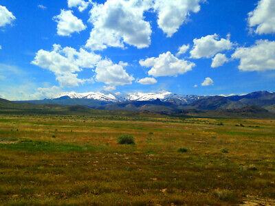Rare 80 Acre Elko Nevada Ranch Near Utah/Idaho Border!  Cash Sale!  No Reserve! 5