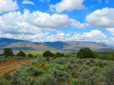 "Rare 10 Acre Elko Nevada Ranch ""Wildhorse Canyon"" W Trees! Cash Sale No Reserve! 7"