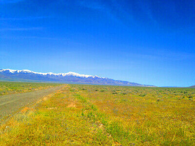Rare 40 Acre Eureka County Nevada Ranch~Adjoins Blm Land  Cash Sale! No Reserve! 8