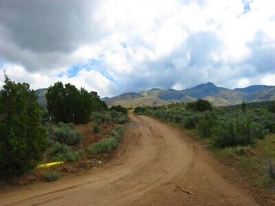 "Rare 10 Acre Elko Nevada Ranch ""Wildhorse Canyon"" W Trees! Cash Sale No Reserve! 5"