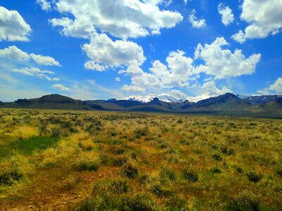 Rare 80 Acre Elko Nevada Ranch Near Utah/Idaho Border!  Cash Sale!  No Reserve! 2