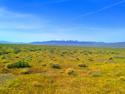 Rare 40 Acre Eureka County Nevada Ranch~Adjoins Blm Land  Cash Sale! No Reserve! 3