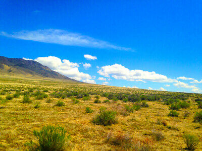 Rare 80 Acre Elko Nevada Ranch Near Utah/Idaho Border!  Cash Sale!  No Reserve! 12