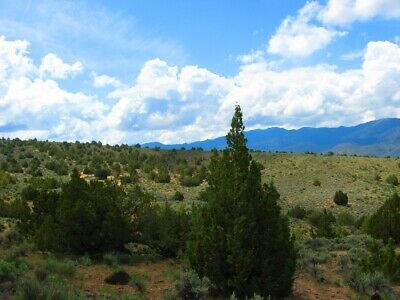 "Rare 10 Acre Elko Nevada Ranch ""Wildhorse Canyon"" W Trees! Cash Sale No Reserve! 10"