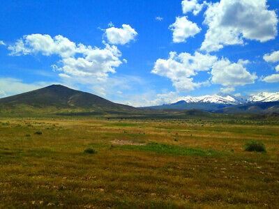 Rare 80 Acre Elko Nevada Ranch Near Utah/Idaho Border!  Cash Sale!  No Reserve! 3
