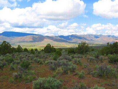"Rare 10 Acre Elko Nevada Ranch ""Wildhorse Canyon"" W Trees! Cash Sale No Reserve! 11"