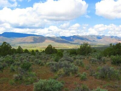 "Ultra Rare 40 Acre Elko Nevada Ranch ""Wildhorse Canyon"" Cash Sale! No Reserve! 11"