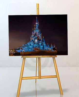 VERY rare Disney Framed Picture Print Art Pocahontas 30x20 Inch Canvas