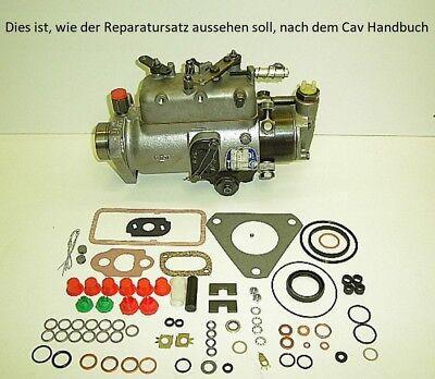Einspritzpumpe Dichtsatz Cav Lucas Delphi Rotodiesel Traktor Reparatursatz