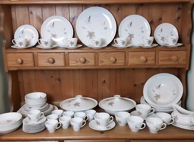 Royal Doulton Tumbling Leaves Dinner Tea & Coffee Service Vintage Excellent 3