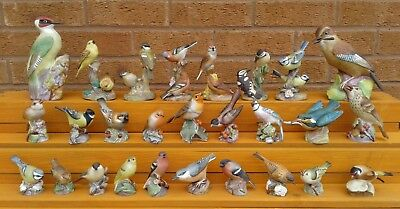 Royal Worcester - Selection Of Fine Bone China Bird Figurines.