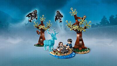 LEGO Harry Potter 75945 Expecto Patronum Sirius Black  N8/19 5