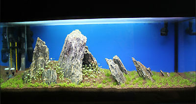 Natural Wood Stone For An Aquarium Aquascaping Iwagumi Style, Nature, Malawi 8