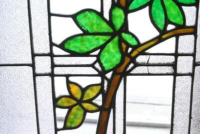 Antique Stained Glass Window Branch & Leaves Pattern 3