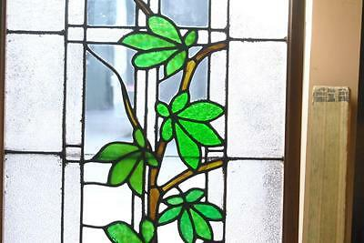 Antique Stained Glass Window Branch & Leaves Pattern 2
