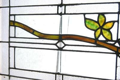 Antique Stained Glass Window Branch & Leaves Pattern 5