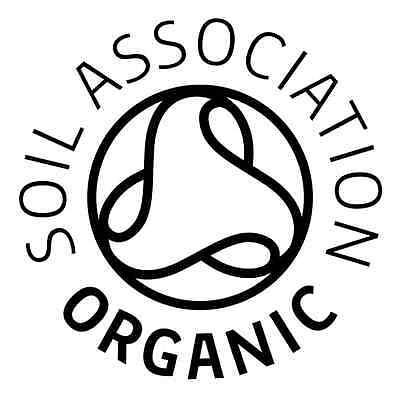 Organic Herb  Basil Genovese  2000 Seeds