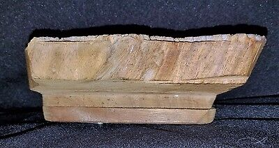 Early 1900's Hand Carved Wood Architectural Plaster Pattern Accent Mold 1 5
