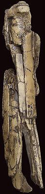 Paleolithic figurine Löwenmensch / Lion Man 6