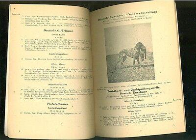 Berliner Jagdhundeausstellung 1947 2 • EUR 9,99