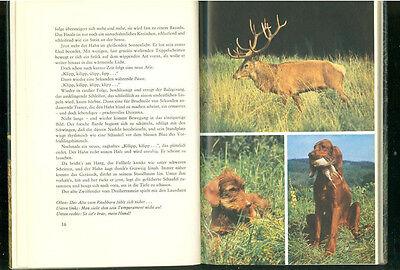 Von Pirschen und Strecken Lehrbuch Jagd und Jäger 2