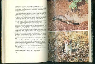 Von Pirschen und Strecken Lehrbuch Jagd und Jäger 3