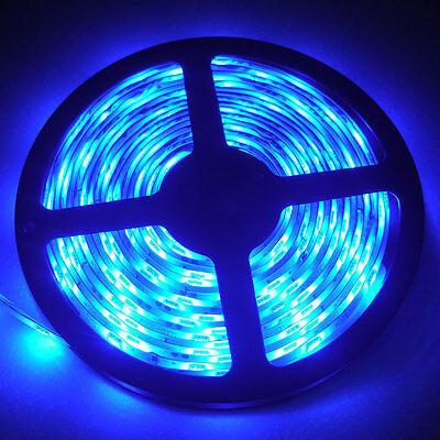 Super Bright Ultra Blue 5M 3528 Waterproof Flexible LED Strip Light 300Leds 12V
