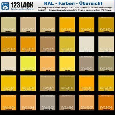 Gut gemocht METALLSCHUTZ LACK RAL Farben Metall Alu Rost Farbe Grundierung SK02