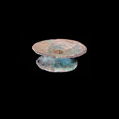 Ban Chiang bronze ear ornament. x4100a
