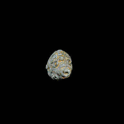 A fine Champa bronze earring with four-sided image of a fish. 09965