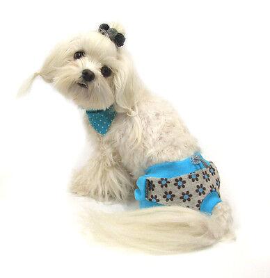 * Schutzhöschen * Hundehöschen * Läufigkeitshöschen für Hunde *CRAZY DOGSZONE 4