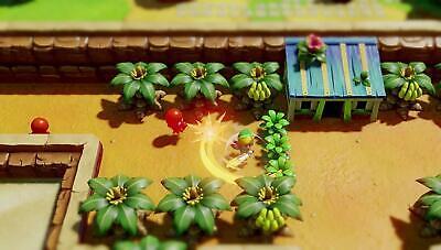 Legend of Zelda Link's Awakening - Nintendo Switch Standard Edition NEW 2