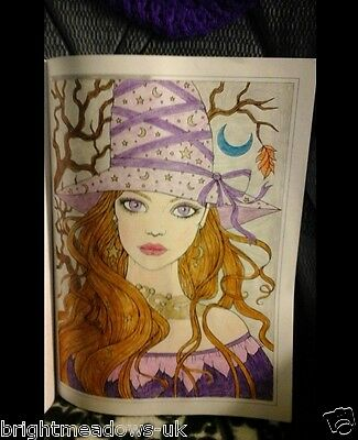 AUTUMN FANTASY HALLOWEEN Adult Colouring Book Witches Vampires