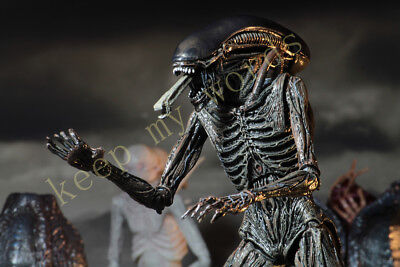 """NECA Alien Covenant Xenomorph 7"""" Scale Action Figure Collection Play toy model 8"""
