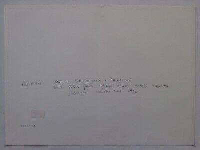 Japanese Prostitutes Woodblock Print Artists Shigemasa & Shunsho Makeup Scroll 10