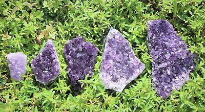 Amethyst Geode Druzy Crystal Quartz Cluster Natural Specimen: You Choose Size! 2
