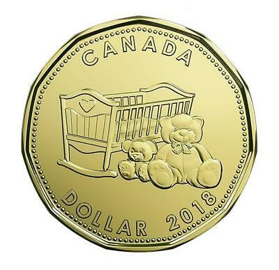 Born in 2018 Baby Gift Coin Set Canada Special Ed $1 Loonie Teddy Bear Cradle 2