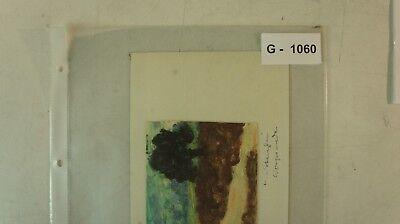 Wapiti von H von Stenglin Waldrand See Revier Mecklenburg  JAGD ALBUM 104