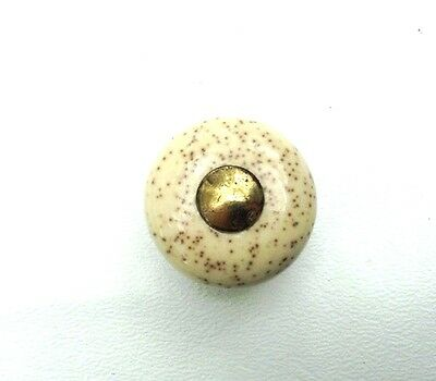 Colonial Country French Brass Vintage antique hardware Porcelain cabinet knob