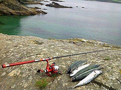 Golf Cart Accessory Golfing Golf Club Fishing Rod & Reel Portable Travel Rod