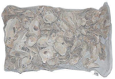 Japanische Austernschalen Muschelschalen KH pH Karbonathärte 10 kg
