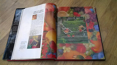 Vintage Kaffe Fassett Glorious Needlepoint book. Inspirational patterns to use 6