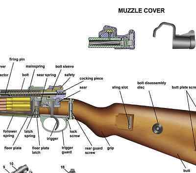 poster 24 x36 mauser k98 rifle manual exploded parts diagram d day